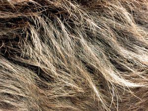 カラーリングできしんでしまった髪の毛の画像
