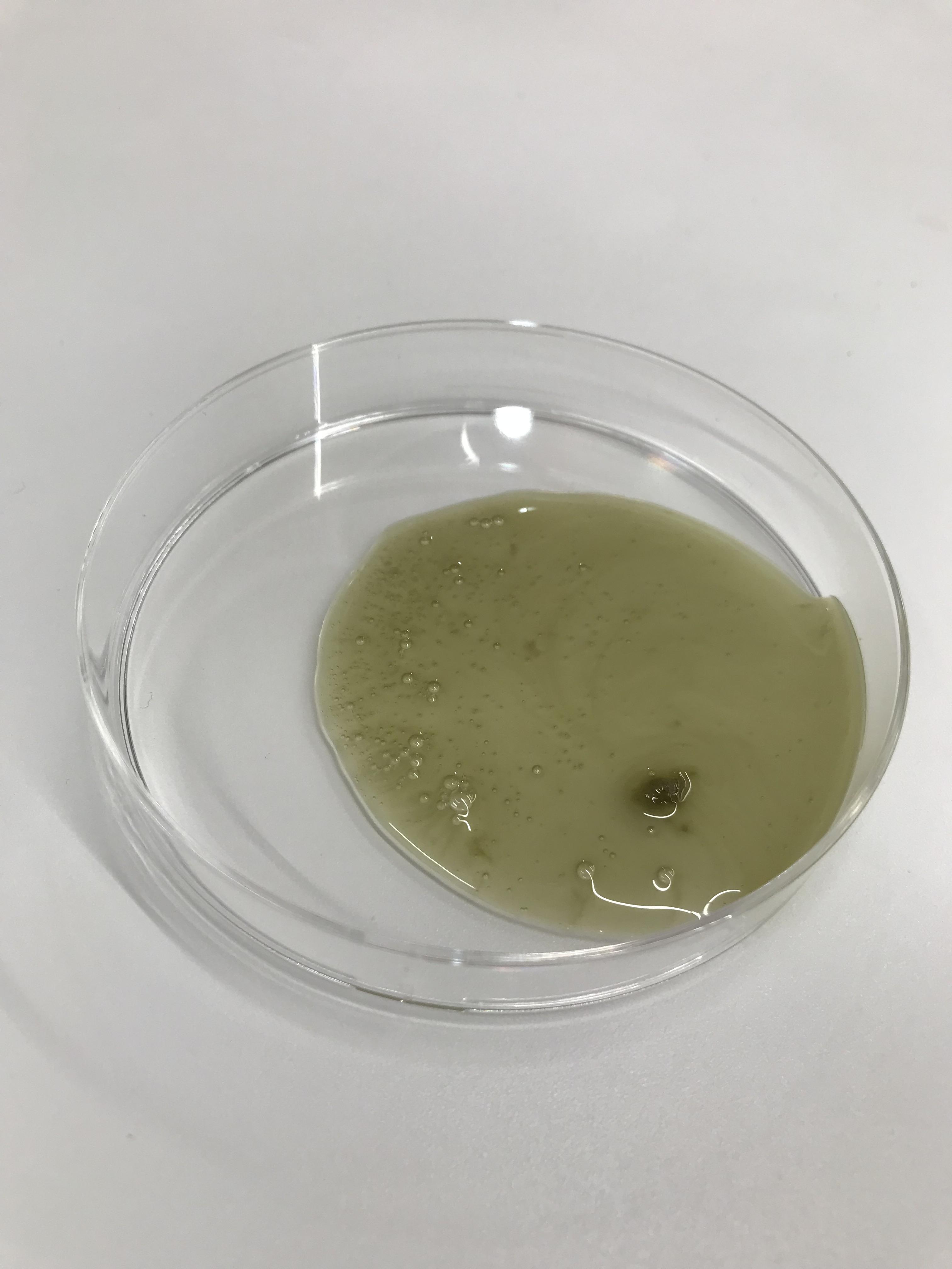 モンゴ流シャンプーEXvol.8のシャンプー液